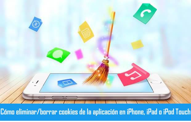 Borrar apps Cookies en iPhone
